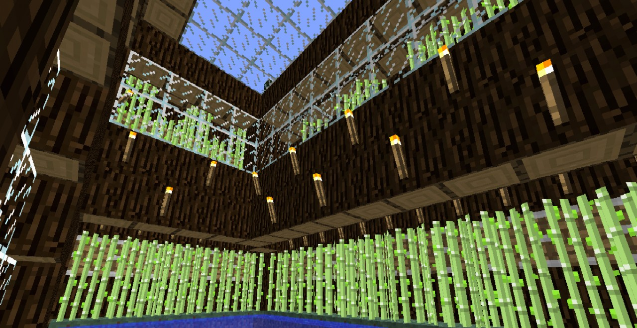 how to grow cactus minecraft