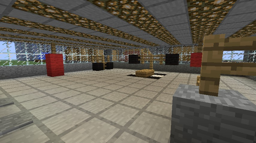 Minecraft gym project