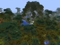 Jungle biome (minecraft 1.2 & 1.1) Minecraft Map & Project
