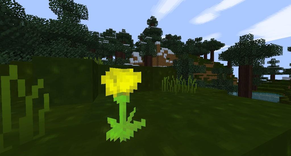 FlowerPower.  (old)