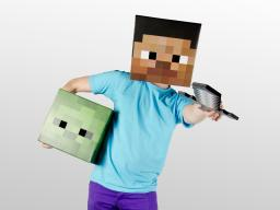 Any Skin Requests? Minecraft Blog Post