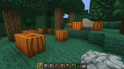 1.2.3 Random Pumpkin Seed Minecraft Map & Project