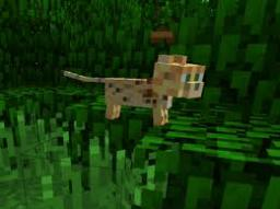 10 Ways to find an ocelot!!! Minecraft Blog