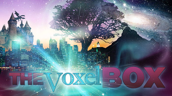 The Voxel Box