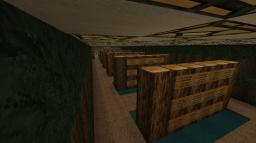 ZOMG minecraft Minecraft Server