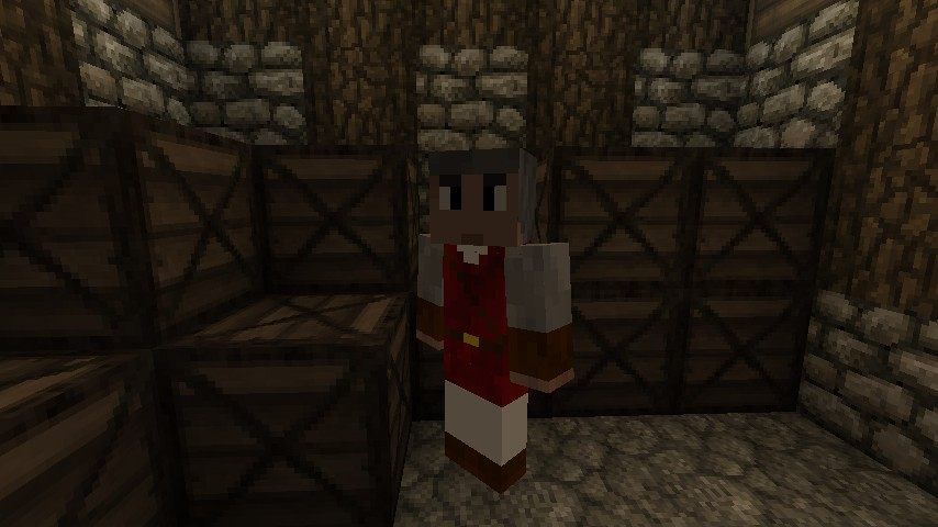 An example of the npcs from noppes' npc mod.