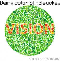 Being Color Blind Minecraft Blog