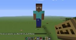 the village Minecraft Map & Project