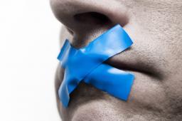 """Freedom of Speech"" on Planet Minecraft Minecraft Blog Post"