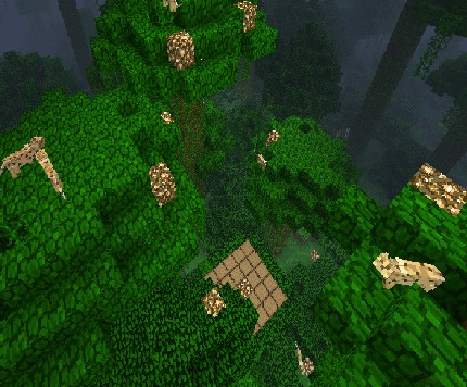 The Wildcat jungle