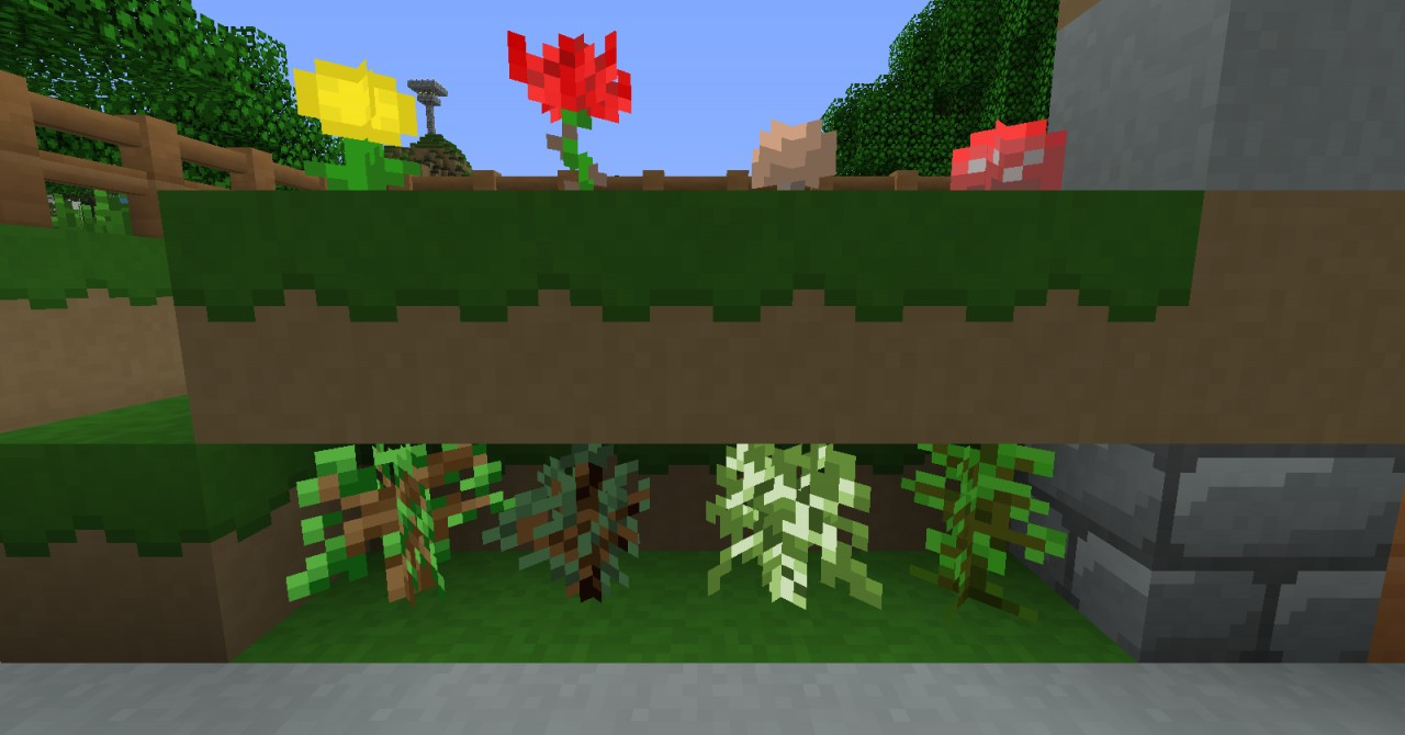 Saplings, Flowers, and Mushrooms
