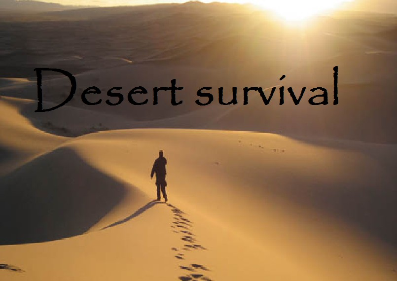 Survival in a desert essay
