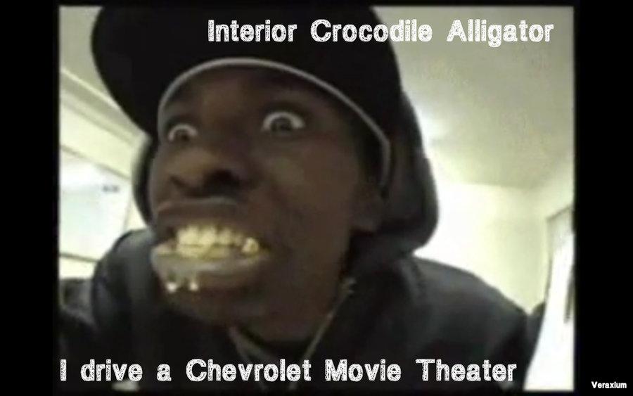 Interior Crocodile Alligator.... :3