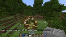 THE TREASURE OF CRAFTMAN Minecraft Project