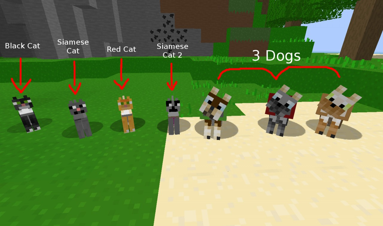 Minecraft Girl Cat Names