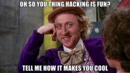 So You Think Hacking Is Fun? Minecraft Blog