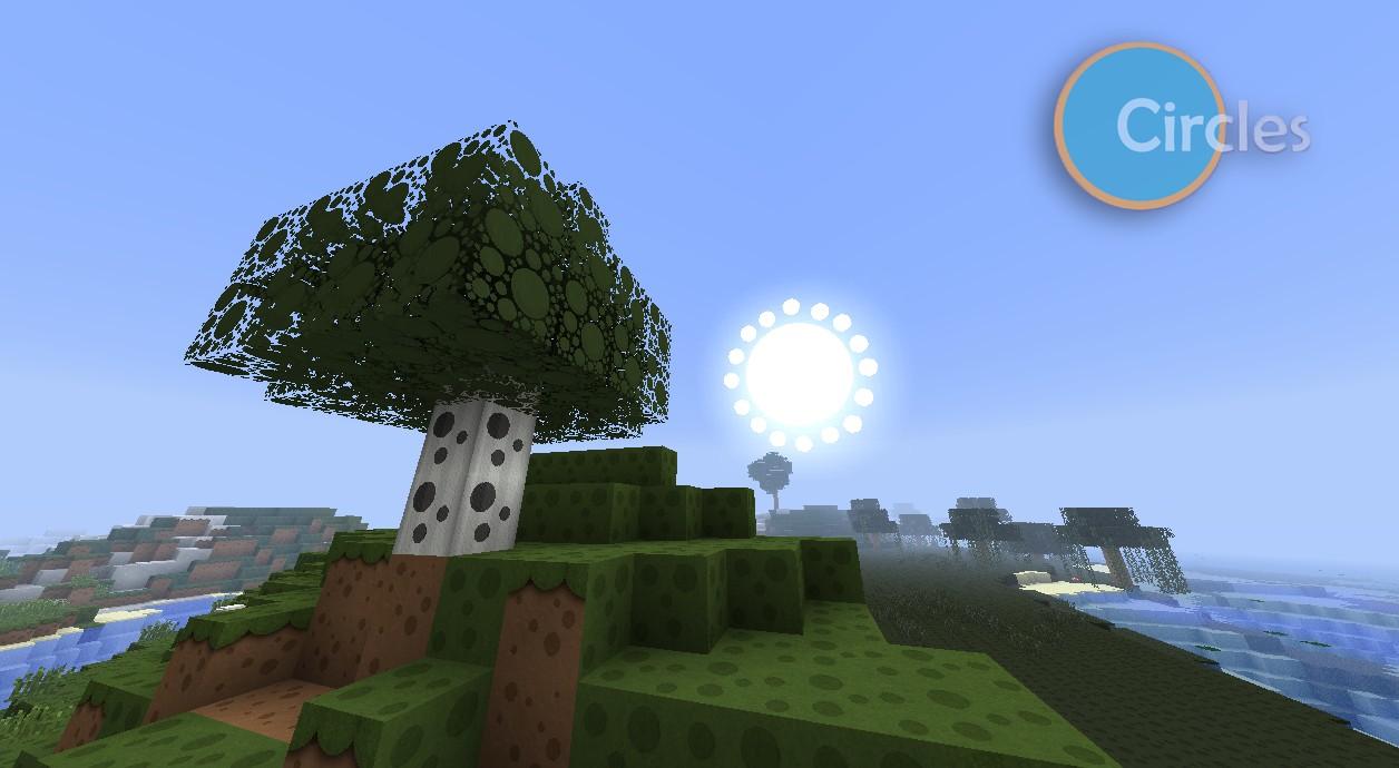 - Birch Tree - Grass - Sun -
