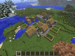 Village spawn Minecraft Project