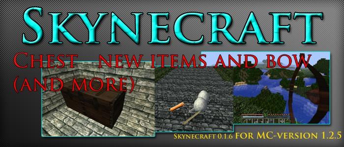 skynecraft__banner_jpg