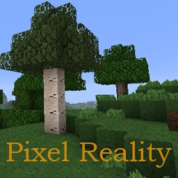 pixel reality closing?!? Minecraft Texture Pack