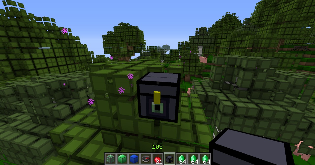 Custom enderchest