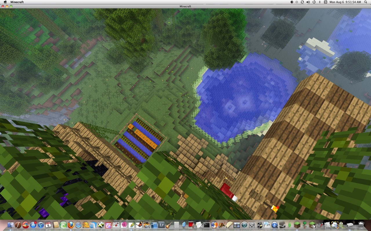 Here You Can See The Diving Board and Farm