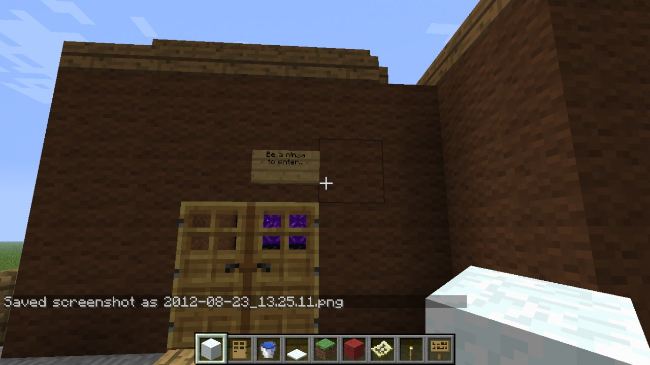 Dojo Courtyard (Entering the Ninja Hideout)