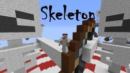 Skleton Minecraft Project