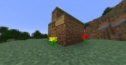 Secret DirtHouse Base Minecraft Map & Project