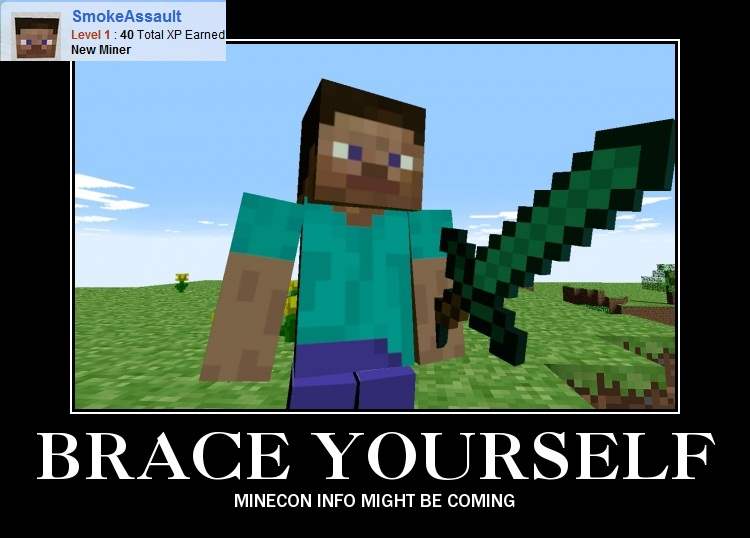 Funny Minecraft Memes 28 Images 1000 Images About