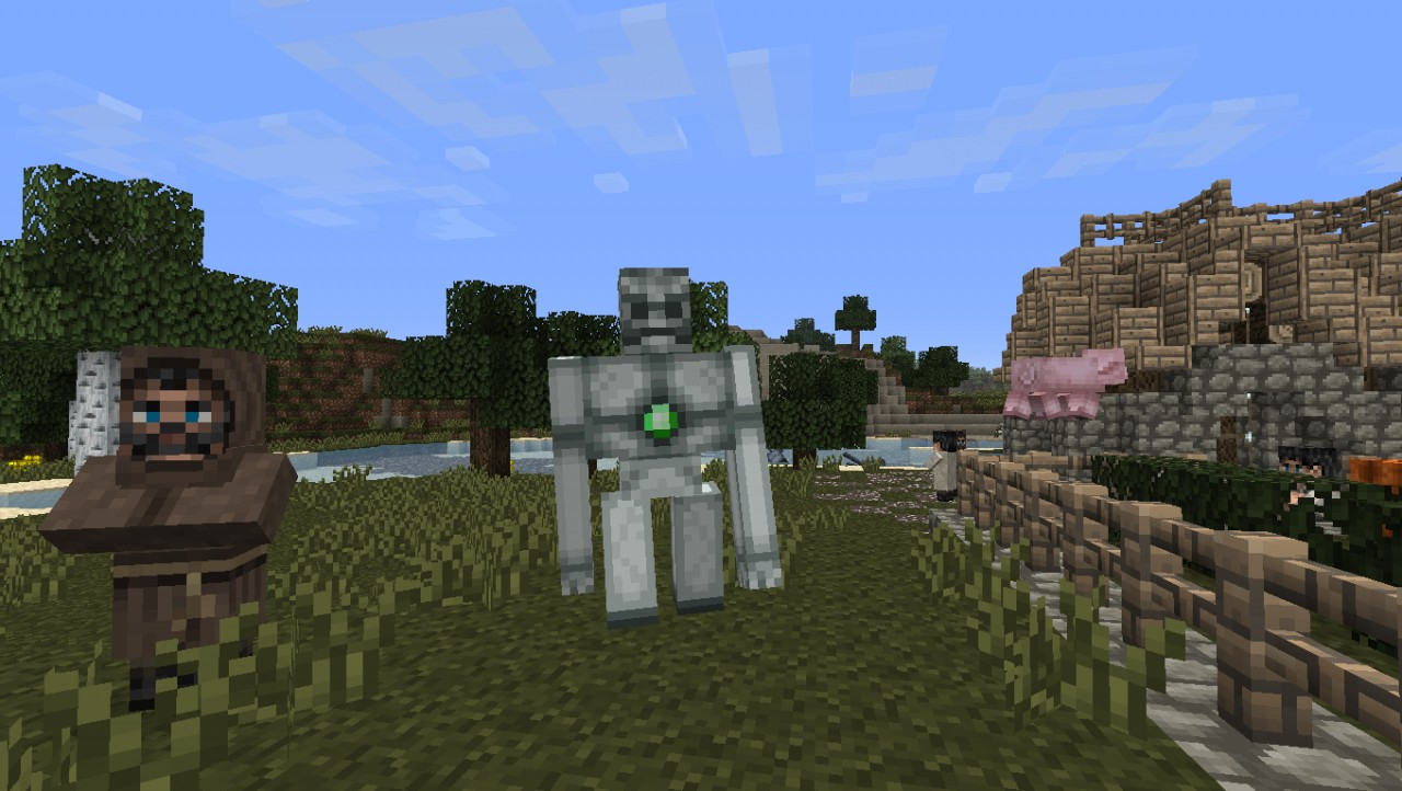 Iron golem and priest, the pig refused to stay still for the picture