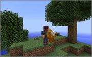 Capes Minecraft Mod
