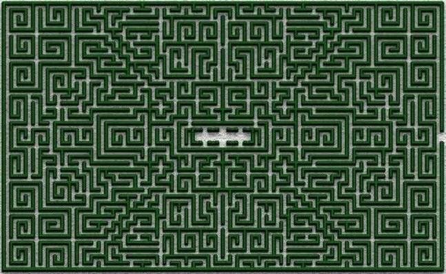 Hedge Maze The Shining