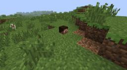 Minecraft Default server Minecraft