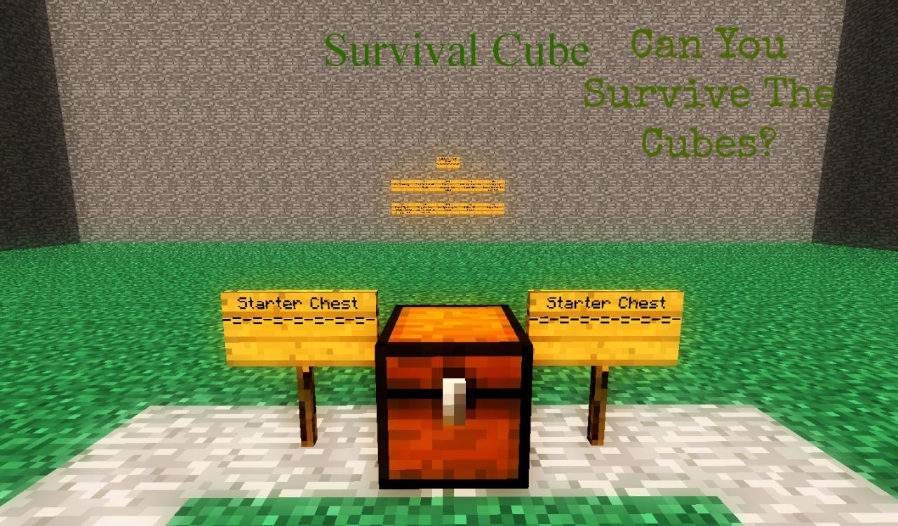 Survival Cube...Can You Survive The Cubes?