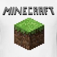 Minecraft, Bad Graphics? Minecraft Blog Post