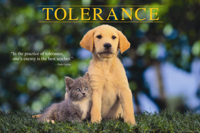 importance of tolerance in a community List the advantages and disadvantages of community policing detail the two most important points for police agencies in utilizing this perspective community policing brings police and citizens together to prevent crime and solve neighborhood problems.