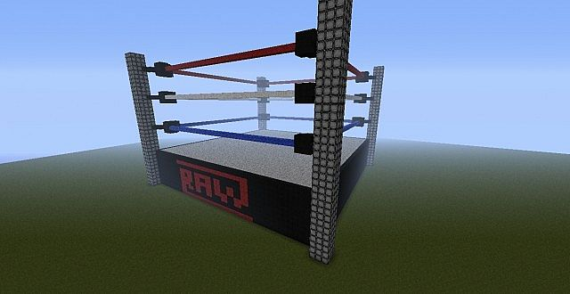 Wwe wrestling ring top view