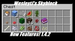 SkyBlock 1.4.2 [New Features] Minecraft Map & Project