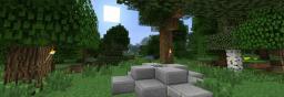 Standard Survival Minecraft Server