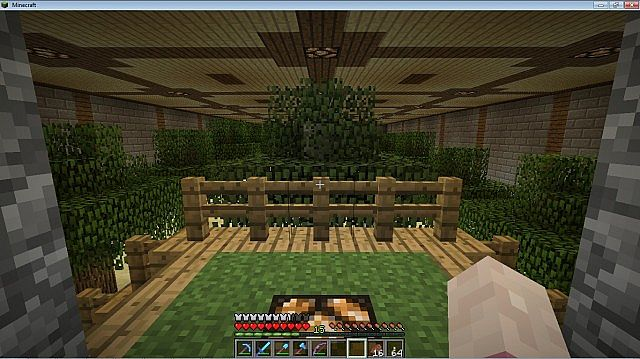 Survival Craft Ideas