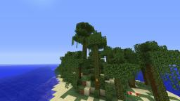 The Lost Island (Survival Island) Minecraft Map & Project