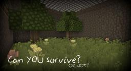 Can YOU survive? Minecraft Map & Project