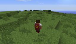 My very own Optifine Cape Minecraft Blog