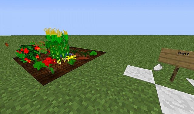 salt and crops