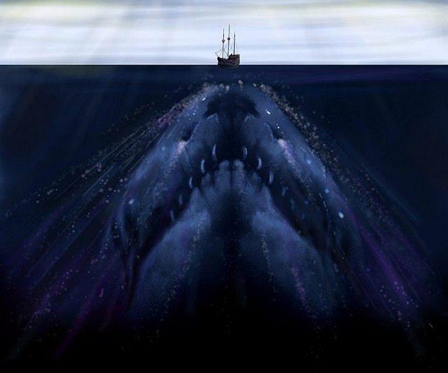 Hd Under Ocean Wallpaper
