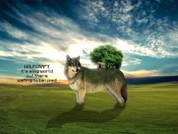 Wolf Craft Minecraft Server