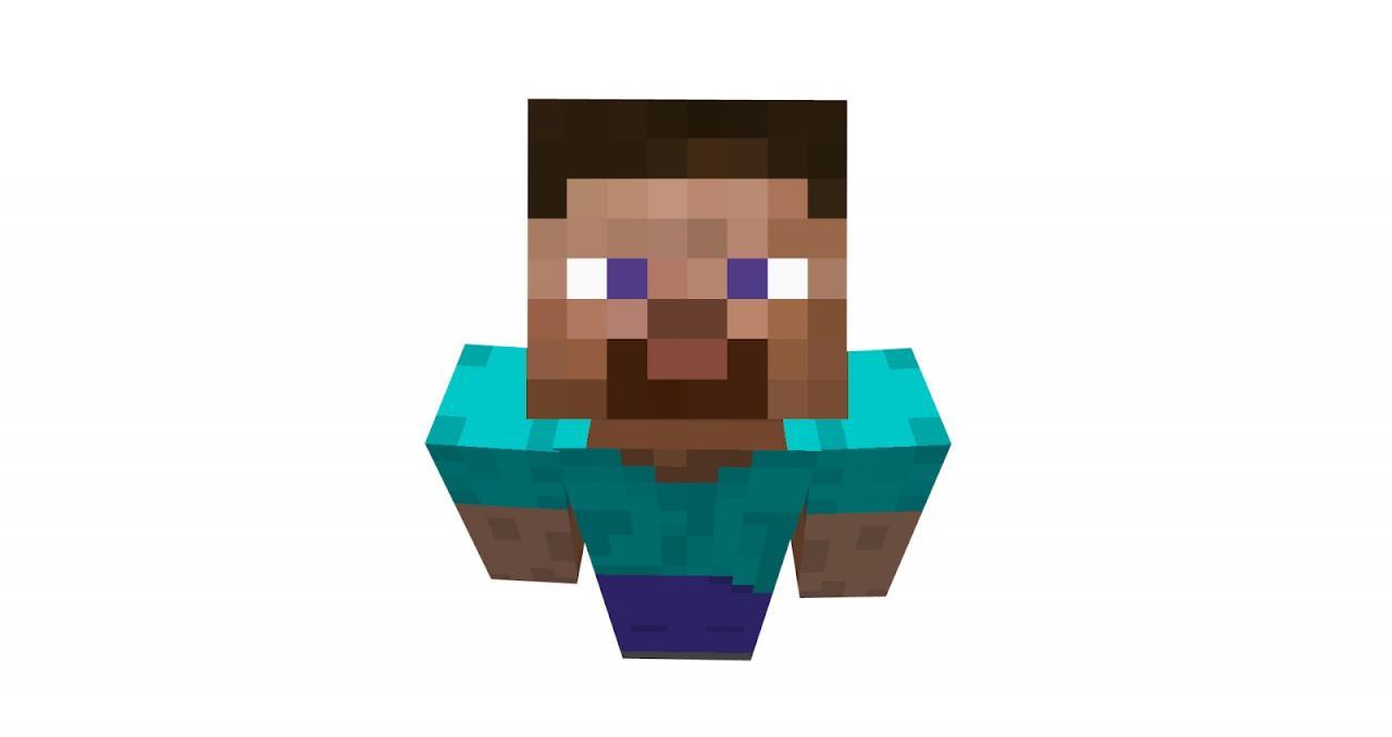 Steve Minecraft Skin Download Project Details  Download