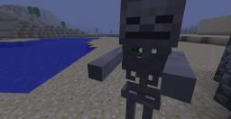 Skeleton Holding... Wait... Nothing?! Minecraft Blog