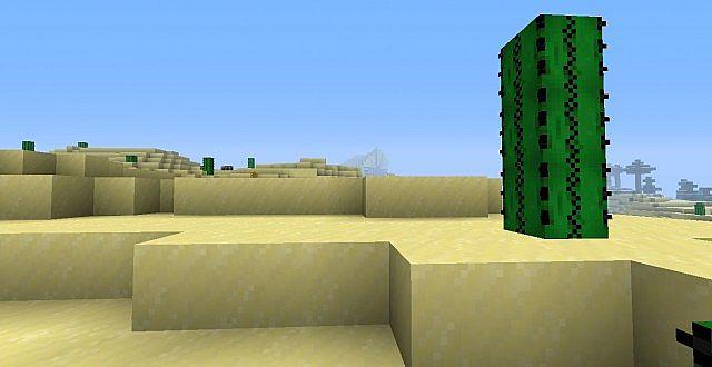 The barren desert!